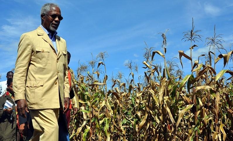 Kofi Annan in Tanzania, in 2011.